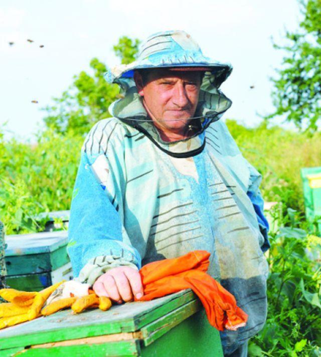 Лечение продуктами пчеловодства больных рассеянным склерозом